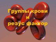 Группы крови и резус фактор