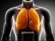 ДИХАННЯ Дихання необхідний фізіологічний процес постійного