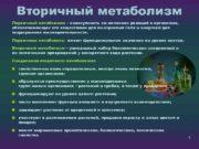 Вторичный метаболизм Первичный метаболизм совокупность хи мических