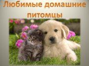 Любимые домашние питомцы Наши преданные собачки Собаки известны