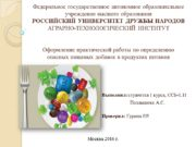 Федеральное государственное автономное образовательное учреждение высшего образования РОССИЙСКИЙ
