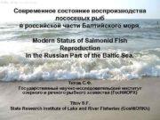 Современное состояние воспроизводства лососевых рыб в российской части