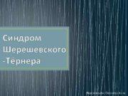 Синдром Шерешевского -Тёрнера Подготовила Согачева Анна