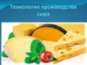Технология производства сыра Сыр это пищевой