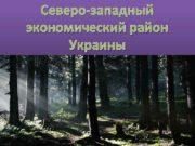 Северо-западный экономический район Украины Состав территорий Район