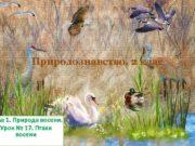 Природознавство 2 клас ма 1 Природа восени Урок