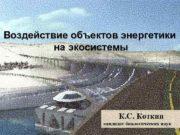 Воздействие объектов энергетики на экосистемы К С Коткин