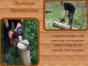 Пиление древесины Скоробогатова Н М учитель технологии МБОУ