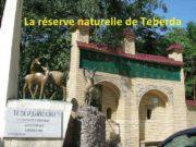 La réserve naturelle de Teberda La réserve