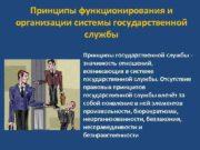 Принципы функционирования и организации системы государственной службы Принципы