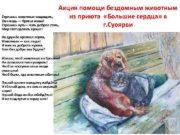 Акция помощи бездомным животным Стремись животных защищать из