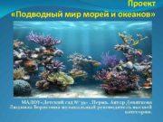Проект Подводный мир морей и океанов МАДОУ Детский