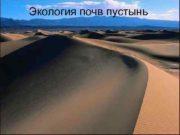 Экология почв пустынь Общие условия почвообразования Почвы