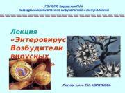 Лекция  «Энтеровирусы.  Возбудители вирусных гепатитов»