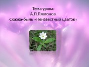 Презентация 6 класс А.П.Платонов Неизвестный цветок