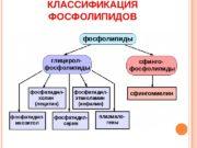 КЛАССИФИКАЦИЯ ФОСФОЛИПИДОВ  СТРОЕНИЕ  ГЛИЦЕРОЛФОСФОЛИПИДОВСН 2 СН