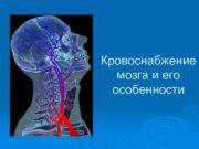 Кровоснабжение мозга и его особенности Кровь поступает