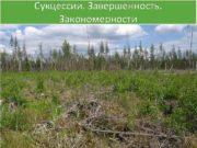 Сукцессии Завершенность Закономерности Климаксовое растительное сообщество Климакс