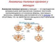 Аномалии половых органов у женщин Аномалия половых органов