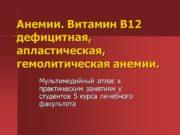 Анемии. Витамин В12 дефицитная, апластическая, гемолитическая анемии. Мультимедийный