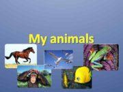 My animals Bird bᴈ d Sing siŋ