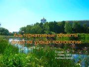 Альтернативные объекты труда на уроках технологии Егорова С.В.