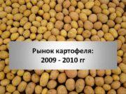Рынок картофеля 2009 — 2010 гг 2008