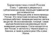 Характеристика степей России Степь — равнина в умеренных