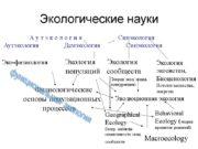 Экологические науки Аутэкология Демэкология Эко-физиология Экология Экология популяций