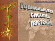 Гормональная система растений Сигналы о стрессе Абсцизовая кислота