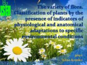 The variety of flora Classification of plants