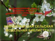 НОВОКУЛЕВСКАЯ СЕЛЬСКАЯ МОДЕЛЬНАЯ БИБЛИОТЕКА Библиотека расположена на