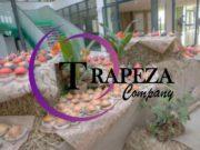 Кейтеринговая компания Трапеза была организована в 2009