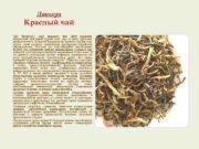 Дяньхун Красный чай Чай Дяньхун сорт красного чая