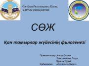 Әл-Фараби атындағы Қазақ Ұлттық университеті СӨЖ Қан тамырлар