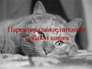 Парентеральное питание Собак и кошек VM Определение
