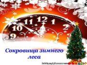 Сокровища зимнего леса Лазарева Лидия Андреевна учитель начальных