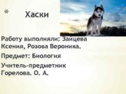 Хаски Работу выполняли Зайцева Ксения Розова Вероника