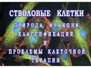 Тело человека состоит из 1014 клеток СОМАТИЧЕСКИЕ КЛЕТКИ