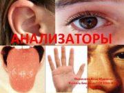 АНАЛИЗАТОРЫ Пименова Анна Юрьевна Учитель биологии ГОУ СОШ