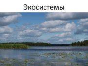 Экосистемы Определение Экосистема это любое сообщество