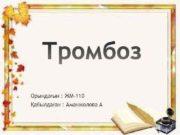 Орындағын ЖМ-110 Қабылдаған Аманжолова А