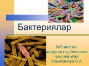 Бактериялар 3 мектепинтернаттың биология пәні мұғалімі Орынханова