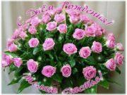С Днем Рождения!!! Желаю тебе, чтобы жизнь твоя