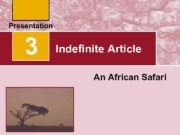 3 Indefinite Article An African Safari Indefinite