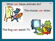 What can these animals do The mouse can