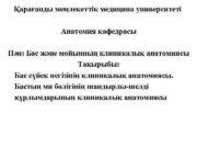 Қарағанды мемлекеттік медицина университеті Анатомия кафедрасы Пән Бас