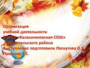 Организация учебной деятельности В МОУ Калашниковская СОШ Лихославльского