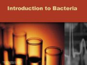 Introduction to Bacteria USDA NIFSI Food Safety in