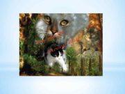 Коты-Воители Знамение Звёзд Веб-сайт